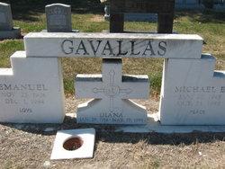 Michael E Gavallas