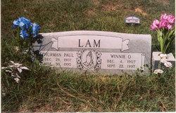 Winnie Opal <I>Looper</I> Lam