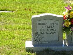 Herbert Wayne Buckels