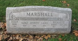 Anthony Marshall