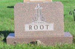 Walter Aron Root
