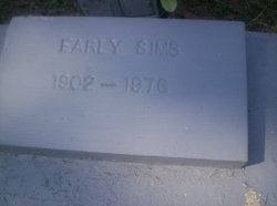 Early Sims