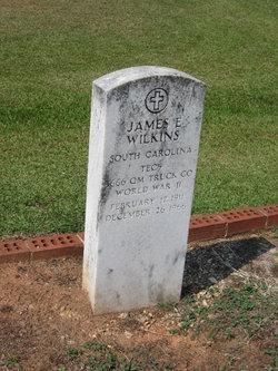 James E. Wilkins