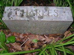 Charles E. Hazzard