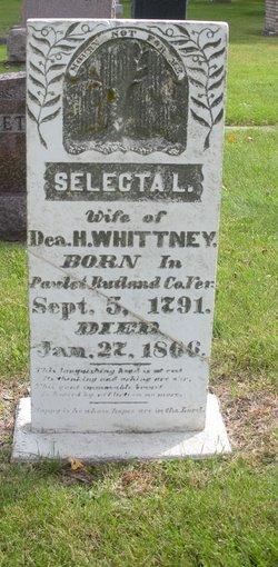 Selecta L Whitney