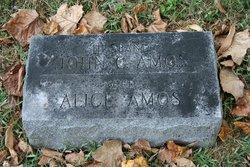 Alice <I>Hatfield</I> Amos