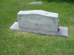 Alexander Brice
