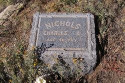 Charles A. Nichols