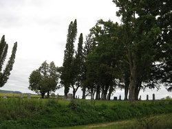 Raese Cemetery