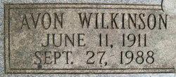 Avon <I>Wilkinson</I> Mills
