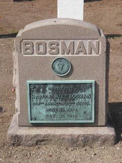 Harold B Bosman