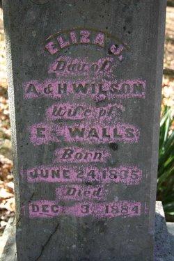 Eliza J. <I>Wilson</I> Walls