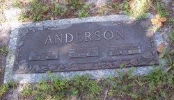 Alvin P Anderson