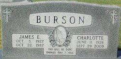 James Elroy Burson