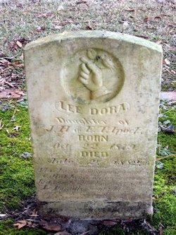 Lee Dora Ipock