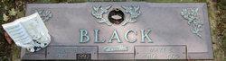 Mary Ethel <I>Pheabus</I> Black