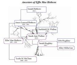 Effie Mae <I>Hethcox</I> Nelson