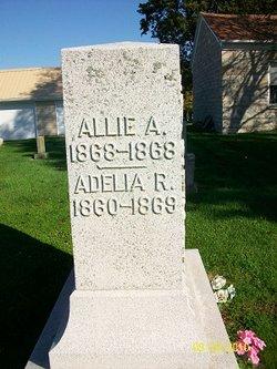 Adelia R Biddick