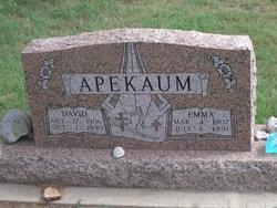 David Apekaum