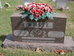 Louie E White