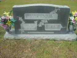 Herman Travis Springs