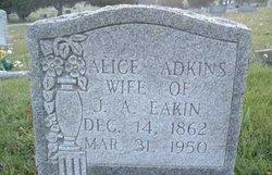 Alice <I>Adkins</I> Eakin