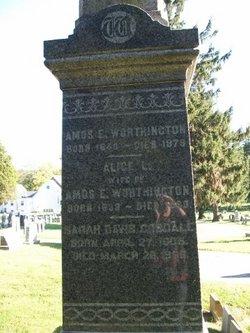 Amos E Worthington