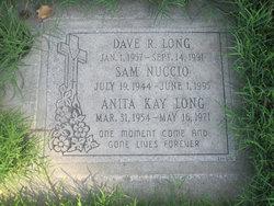Dave R Long