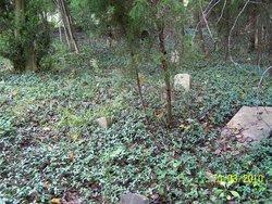 King Family Cemetery