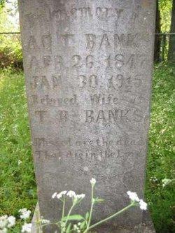 Adeline Tilley <I>Hamilton</I> Banks