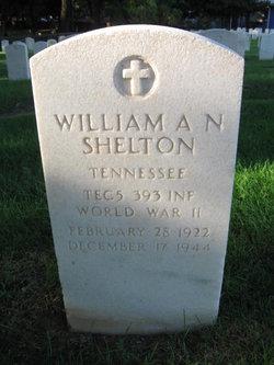William A.N. Shelton