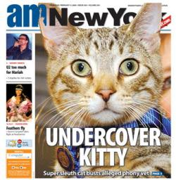 Fred The Undercover Kitty