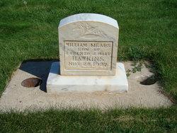 William Mears Hawkins