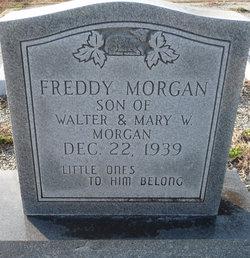 Freddy Morgan