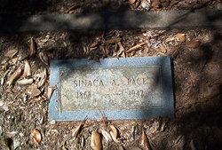 Sinaca Addison Pace