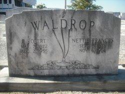 Nettie Frances <I>Nelson</I> Waldrop
