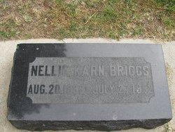 Nellie Alzadie <I>Karn</I> Briggs