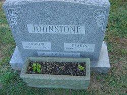 John C Johnstone