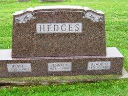 "Louisa Jane ""Jennie"" <I>Palmer</I> Hedges"