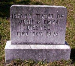 Infant Twins Diestel