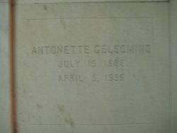 Antonette <I>Armando</I> Gelsomino