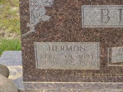 Albert Hermon Bird