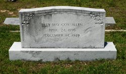 Lilly Mae <I>Cox</I> Allen