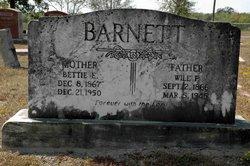 Elizabeth Bettie <I>Stuart</I> Barnett