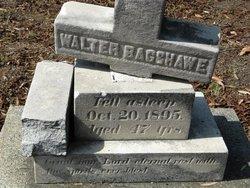 Walter Bagshawe