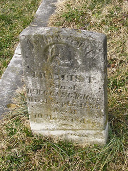 Francis T. Willson