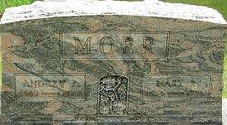 Mary Rebecca <I>Ambrose</I> Morr