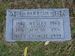 Georgie Parrish
