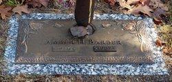 Amber H. <I>Hill</I> Barber
