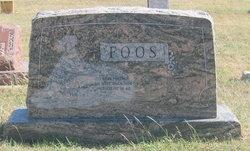 George Henry Foos